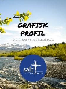 Grafisk profil Salt framsida 140407