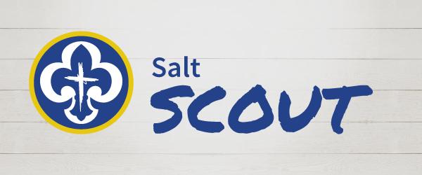 Salt Scout